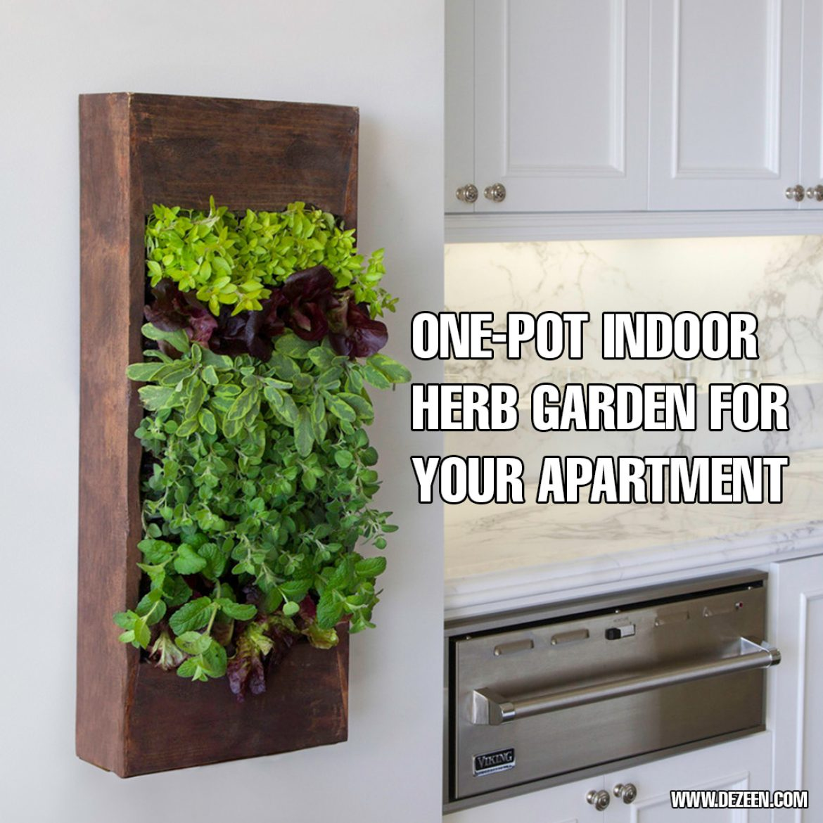 One Pot Indoor Herb Garden For Your Apartment