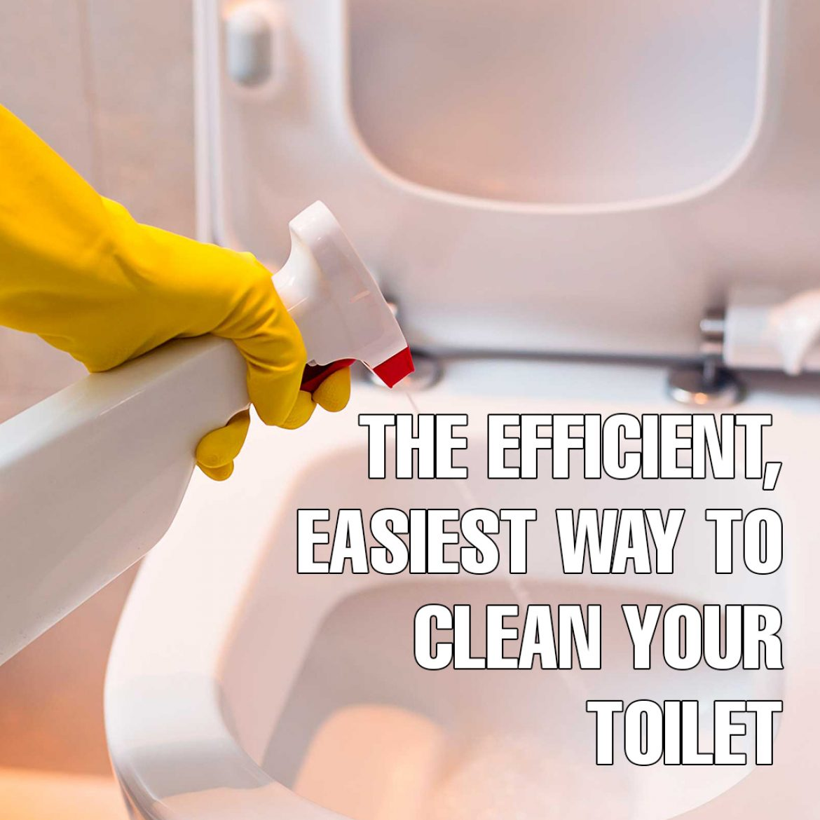 Toilets Deserve Some Cleaning Attention Too Though Most People Think That The Toilet Is A Ghastly C But Where Would We Be Without It